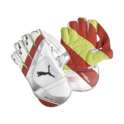 Puma Kinetic 4000 AIR Wicket Keeping Gloves